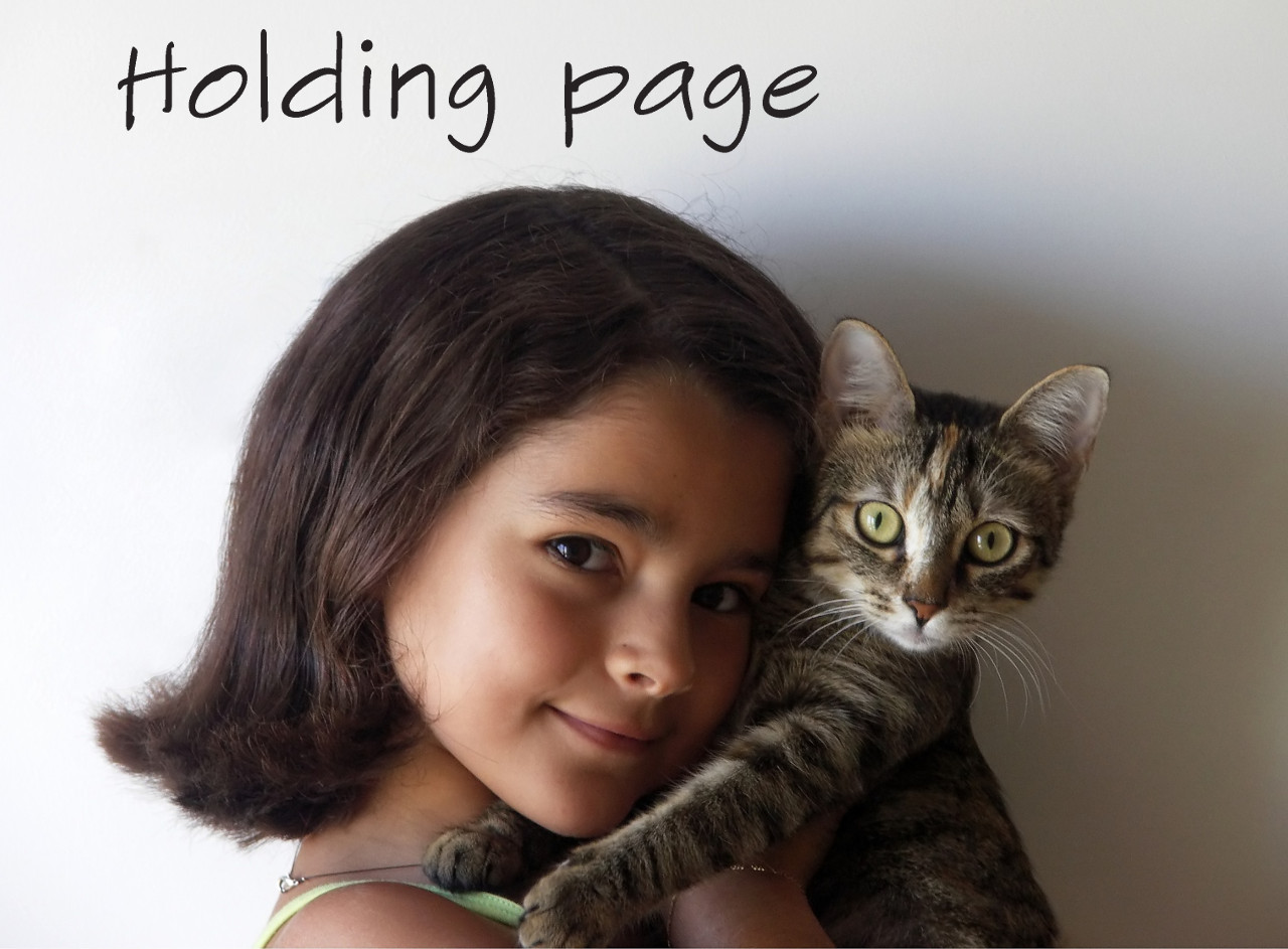 Holding Page